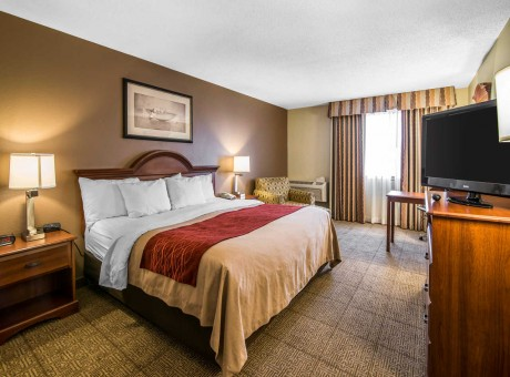 Comfort Inn Santa Rosa - King Bed