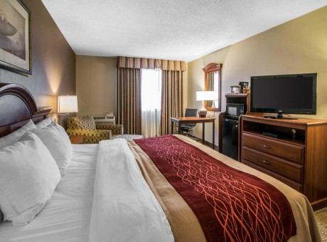 Comfort Inn Santa Rosa - Guest Room with King Bed
